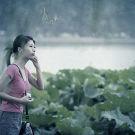 西湖攻略图片