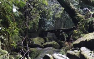 【汤布院图片】《九州の晚夏》鹿儿岛、屋久岛、指宿、人吉、熊本、天草、由布院、别府、福冈、长崎散心14日游记