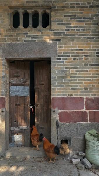 都是砖瓦房结构,是明清时期的岭南古村落建筑群