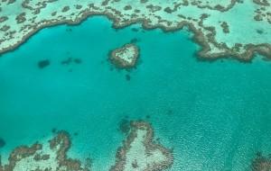 【悉尼图片】1月的夏天——一家三口的东澳之旅(悉尼、艾尔利沙滩、塔斯马尼亚、墨尔本、大洋路)