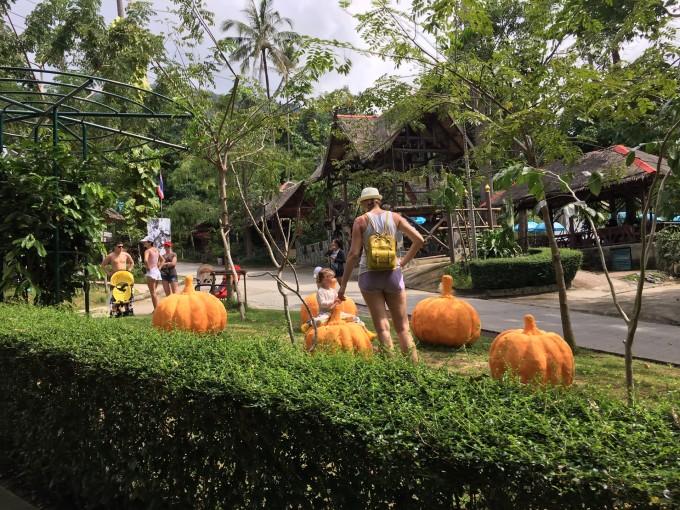 到了动物园里看大象,外国小孩在做游戏