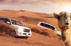 迪拜沙漠冲沙体验 (可定今日+中文导游+自有车队+精选红沙+骑骆驼+汉娜手绘+自助晚餐+水烟+阿拉伯歌舞表演)