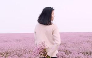 【鄱阳湖图片】寥子花开 | 遇见粉色鄱阳湖