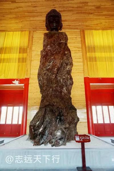 徜徉在由造型各异的八百罗汉所形成的巨大的根雕佛国中,给人以视觉