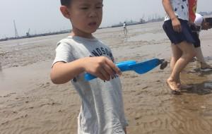 【黄骅图片】贝壳螃蟹都到桶里来