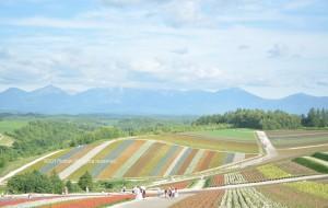 【北海道图片】关于夏天所有的美好你都有|北海道手绘之旅