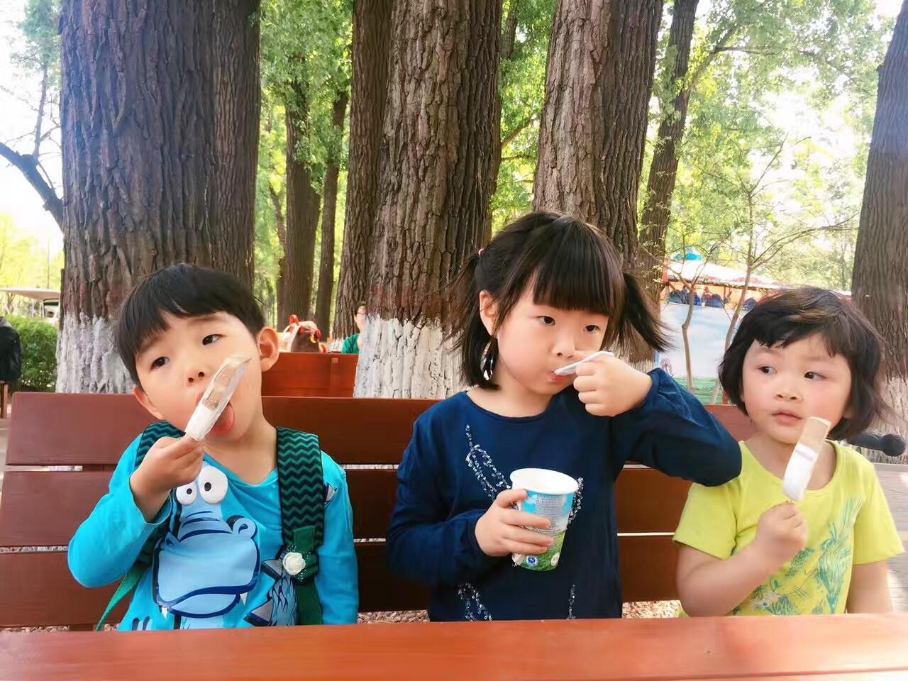 三个娃娃春游 大兴野生动物园 霸州茗汤日月潭温泉 宝贝们玩的超开心