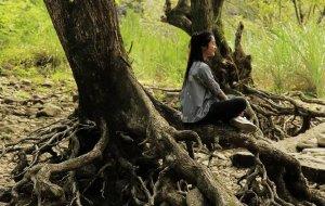 【永嘉图片】《三人行》之端午两天,初夏的绿