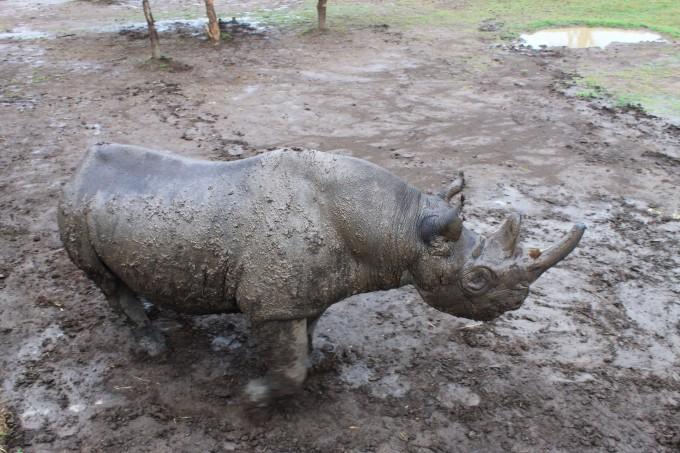 甜水野生动物保护区