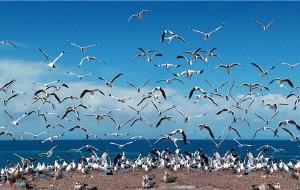 【乌兰图片】青海湖茶卡盐湖两日游攻略——行走的人人人人人