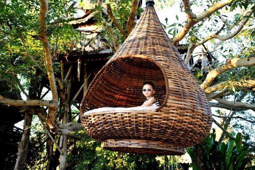 【树屋】掩映在树丛中3座可爱的小木屋,偶而还可以看见骑着大象的游客