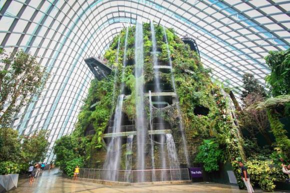 新加坡滨海湾花园 花穹和云雾林双馆电子票 今日可订图片
