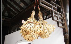 【扬州图片】杨花点点是春心——三月扬州行