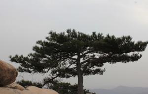 【蓟县图片】盘山