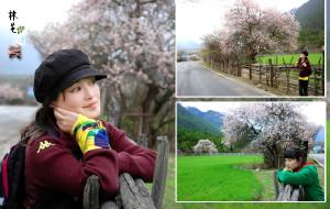 【昌都图片】仙境般的桃源秘境 林芝赏花完整攻略