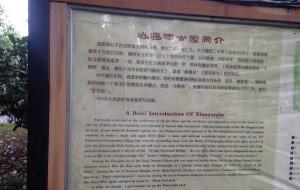 【亳州图片】【但为君故】一枚曹魏粉的寻梦之旅:合肥、亳州、洛阳、许昌、郑州不完全攻略
