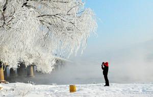【吉林市图片】雾凇