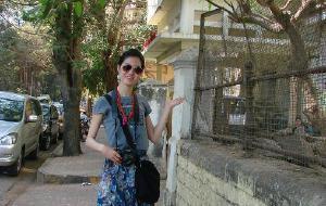 【孟买图片】孟买斑驳阳光让人想起杜拉斯