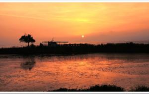 【太湖图片】夏日里的春天——太湖湿地