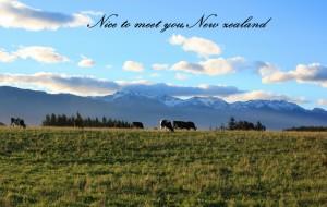 【但尼丁图片】拉着青春的小尾巴 我们走吧【新西兰--南北岛20日自驾 】