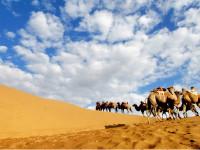 库布齐沙漠