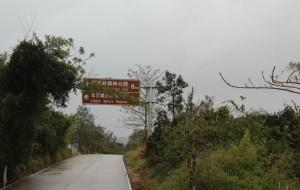 【昌江图片】雨中,昌江霸王岭下木棉花开,更多佳境
