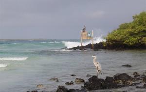 加拉帕戈斯群岛图片