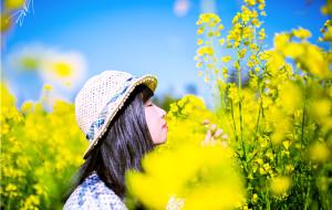 【昆明图片】如果你恰巧要去云南,三月罗平的阳光正在等着你!
