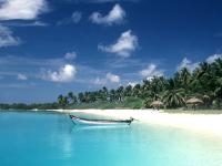 罗德里格斯岛