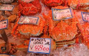 札幌美食-二条市场