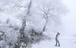 【长春图片】大雪纷飞东北最北——我的漠河雪中情之旅