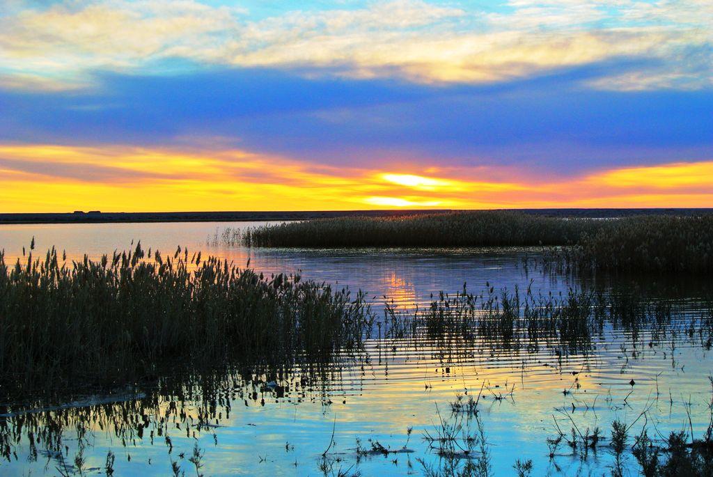 —千年胡杨怪树林—阿拉善左旗—腾格里沙漠(月亮湖)银川市—全国各地