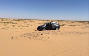 【阿拉善左旗图片】【大漠深处】阿拉善-额济纳5日自驾