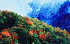 【宝兴图片】2015国庆,到东拉山天然氧吧看红叶初现