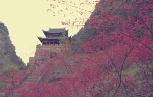 【剑阁图片】#花样游记大赛#剑门关——伟岸而不失浪漫,坚毅而富有情怀!【多图】