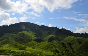 【金马伦高原图片】金马伦高原, 马来西亚