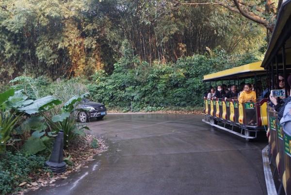 广州 游记   这里最大的特点就是摆脱了传统动物园的