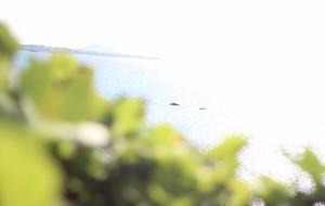 【西归浦图片】中秋节—美丽的济州岛之旅