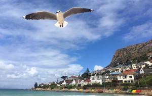 【约翰内斯堡图片】你好 彩虹之国——七彩南非深度游