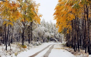 【兴安盟图片】【王小小的旅途】2016第一场雪——深秋的多彩之梦(海拉尔~阿尔山~满洲里)