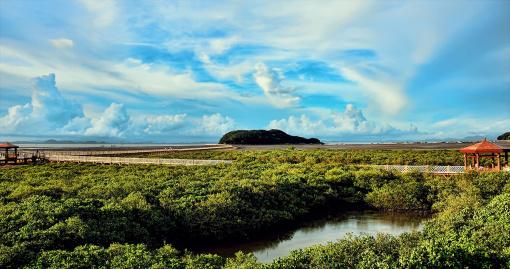 【广州出发】野生动物世界 赤坎古镇 海陵岛4日游,赠送篝火晚会,入住