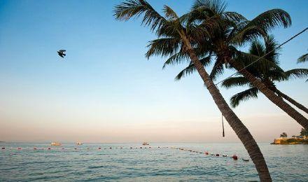 【拥抱碧海蓝天】芭提雅格兰岛萨岛出海体验/一日游