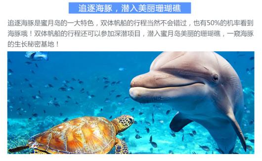【追寻海豚】泰国普吉岛蜜月岛公主号一日游(海钓浮潜