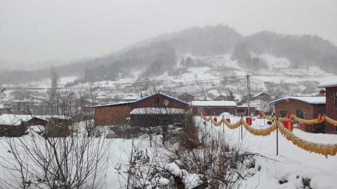 外面下雪了,水墨画一样的风景! 超级有美感!