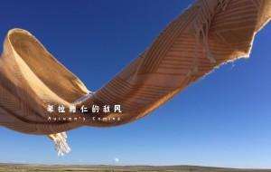 【唐布拉草原图片】希拉穆仁的秋风