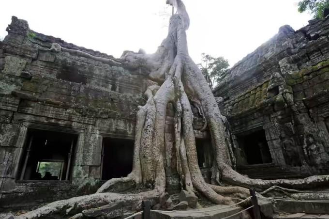 柬埔寨多少人口_柬埔寨面积多大,人口多少