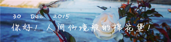 30 Dec 2015 你好!人间仙境般的棉花堡!