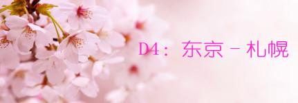 D4:东京-札幌